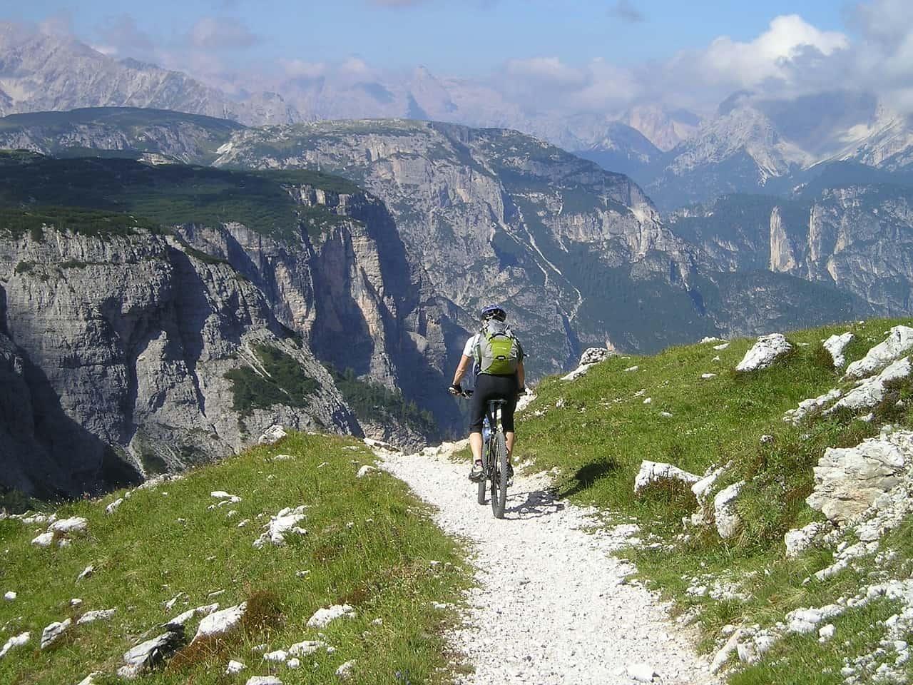 singletrail, mountain bike, bike